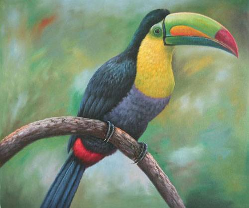 Bird painting,birds oil paintings,Sinoorigin