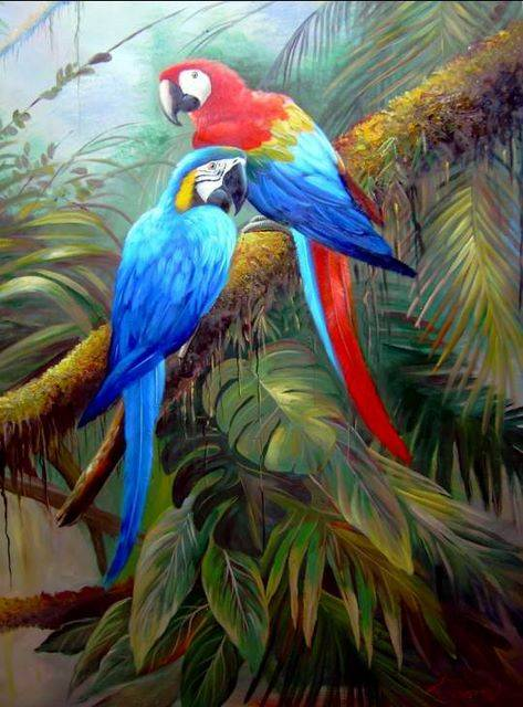 Art Painting Birds