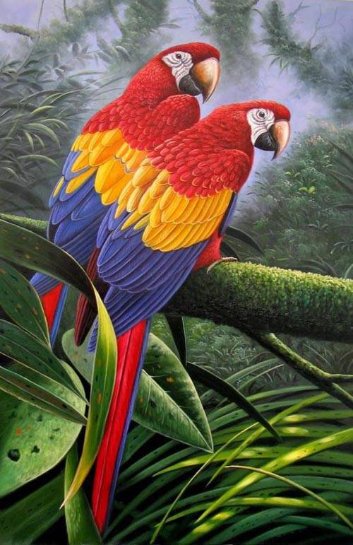 bird painting 4 birds oil paintings sinoorigin