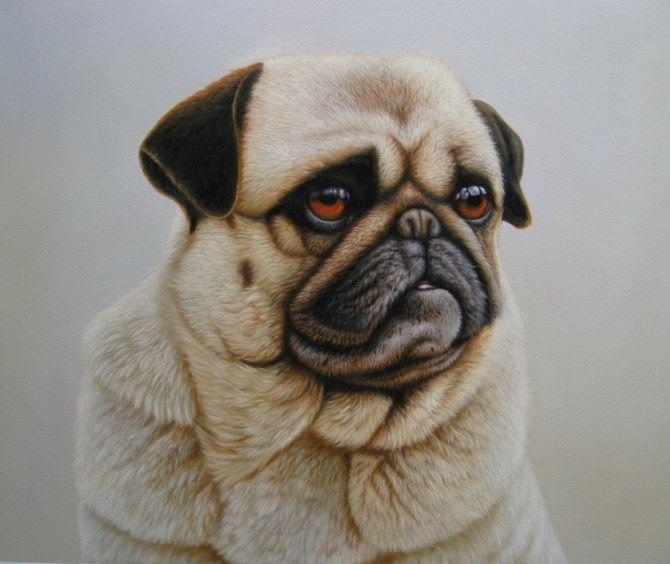 Dog Painting Cat Painting Oil Paintings Sinoorigin