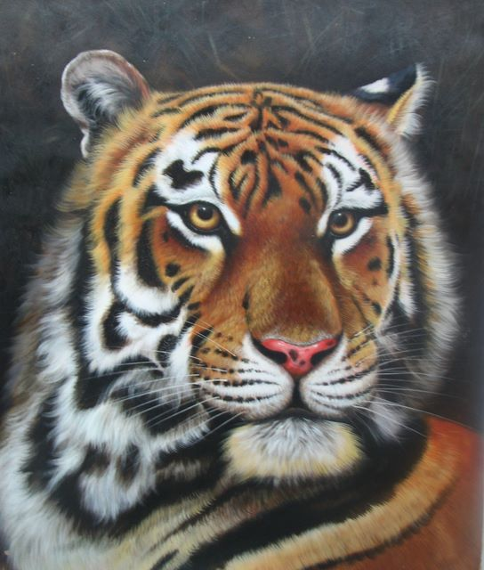 Tiger oil painting 2,Oil paintings,Sinoorigin
